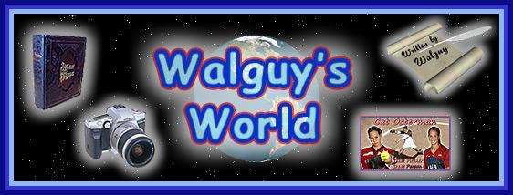 Walguy Banner